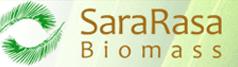 sinergy sarasa logo